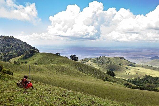 4 Days L. Nakuru & Masai Mara