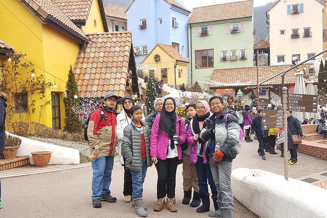 Winter 8 days Ski Jeju Busan Mt Seorak Seoul on the end Nov to Jan