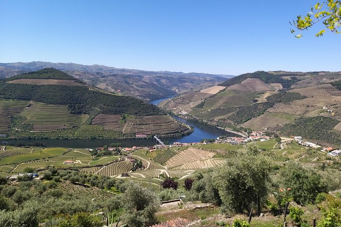 Douro Valley Private Wine Tour & Tastings from Porto - Full Day - 2 Wineries