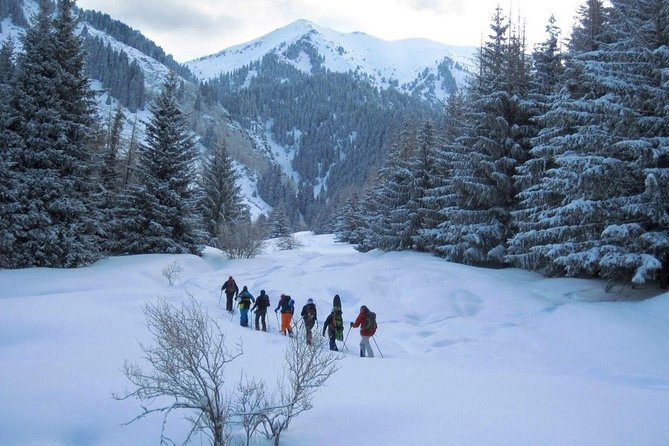 1-day Backcountry Tour
