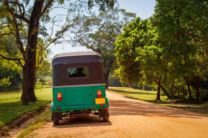 Trail Amidst Tea Plantation and Tuk Tuk Ride in Sri Lanka - A Guided Tour photo 6