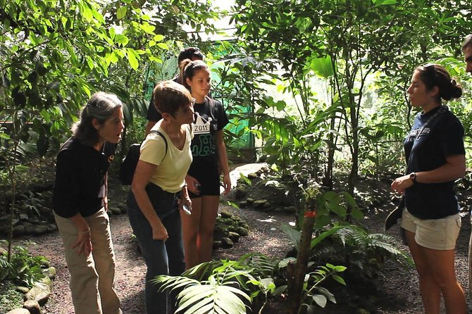 Skip the Line: The Butterfly Conservatory Admission Ticket