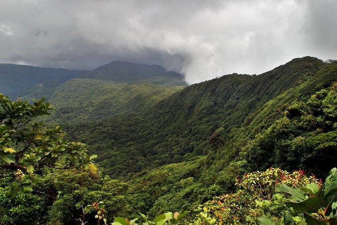 Skip the Line: Santa Elena Cloud Forest Reserve Admission Ticket