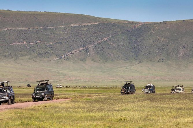 4 Days Join Group Trip To Serengeti Ngorongoro And Tarangire