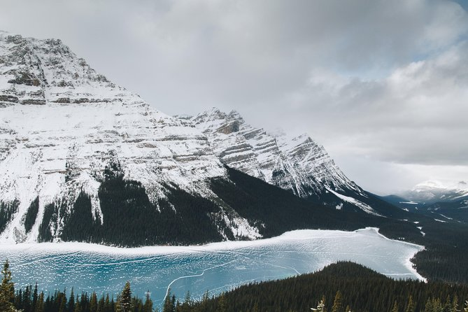 Rockies Winter Explorer 4-Day Tour from Vancouver