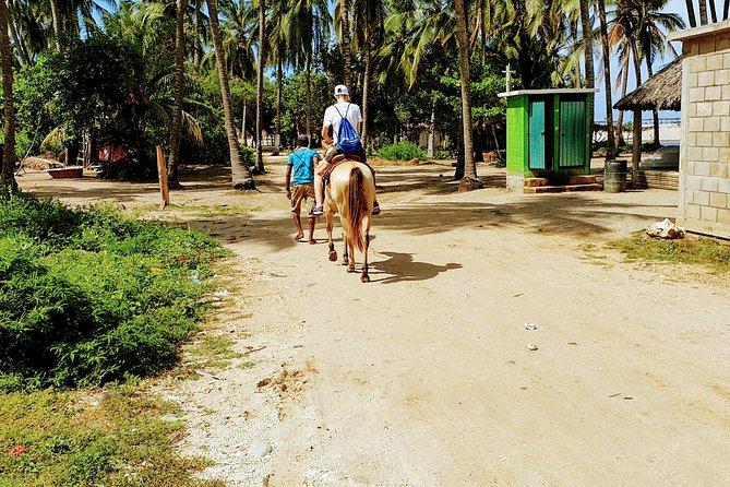 ☝ Beach Horseback Riding - MEXICAN FAJITAS Baby Turtle Release & Croc Farm Visit