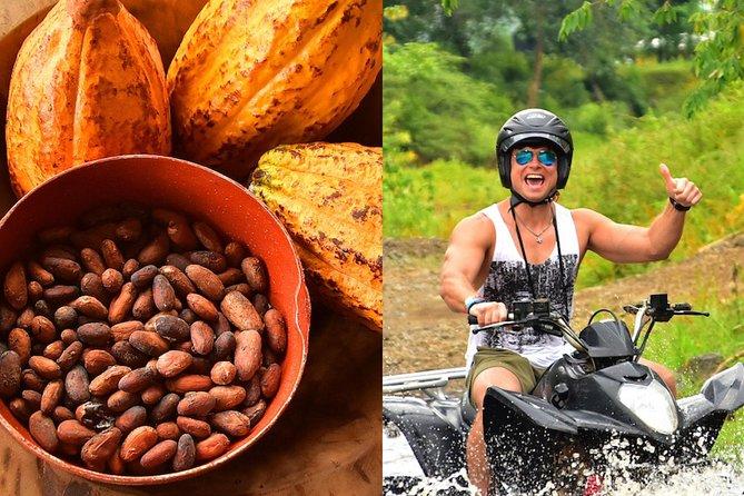Atv Adventure + Chocolate Experience