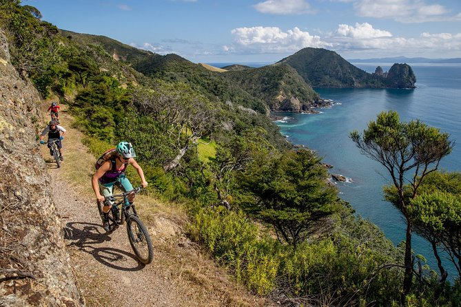 Sea to Summit- Electric Mountain Biking Tour in Akaroa