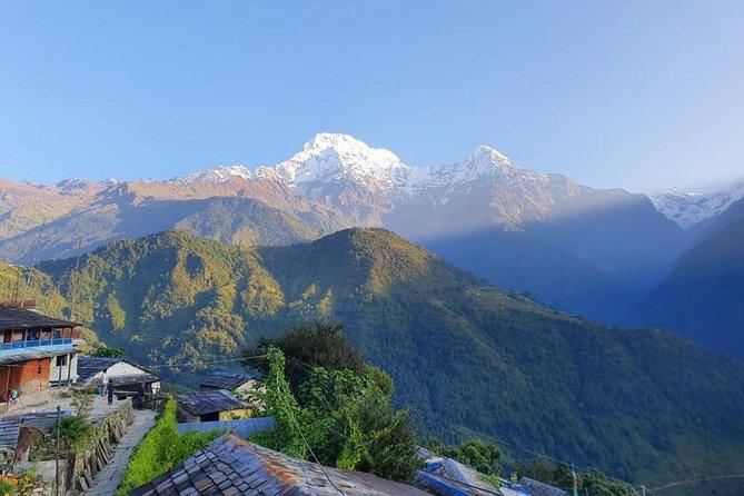6 Days Stunning Mohare Danda and Cultured Ghandruk Village Trek From Pokhara
