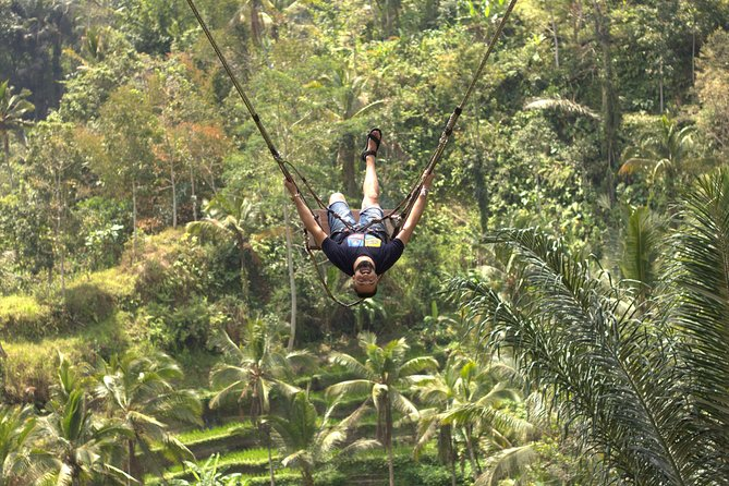 Best of Ubud Main Attractions