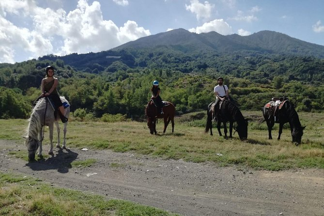 Horse riding on Vesuvius