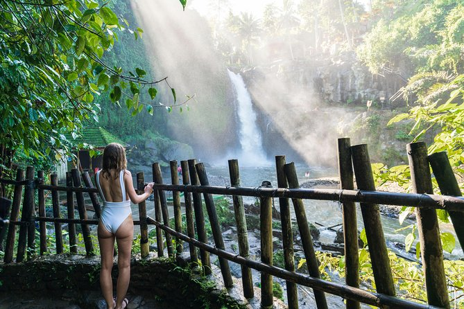 All Inclusive Ubud Tour with 15 Sitter Van photo 13