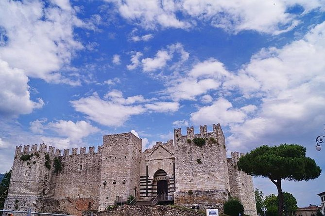 Private Transfer: Rome City to Prato or vice versa