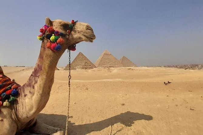 Private Tour To Giza Pyramids, Memphis, Sakkara,camel Ride - Lunch Inlcuded