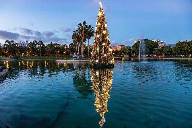 Magic Christmas Tour in Malaga