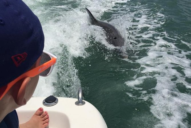 Dolphin Tours - Fort Myers Beach / Estero Bay photo 10
