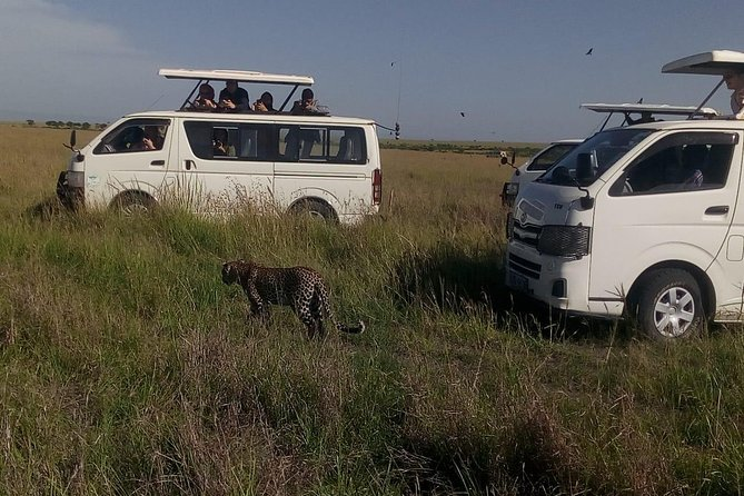 5 Days Maasi Mara Game Reserve and Lake Nakuru National Park