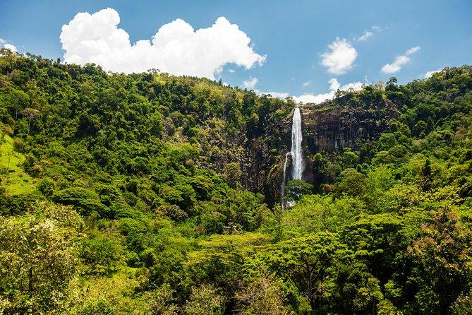 Ohiya and Bambarakanda Waterfall Trekking Trip in Sri Lanka -A Guided 2D/1N Tour