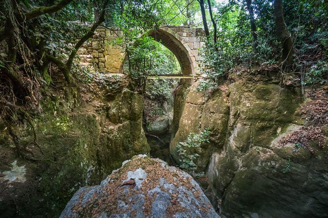 Guided Tour - Baalbek, Ksara, Chouf forest