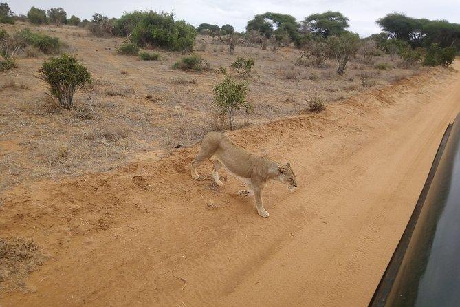 2days Taita hills wildlife sanctuary