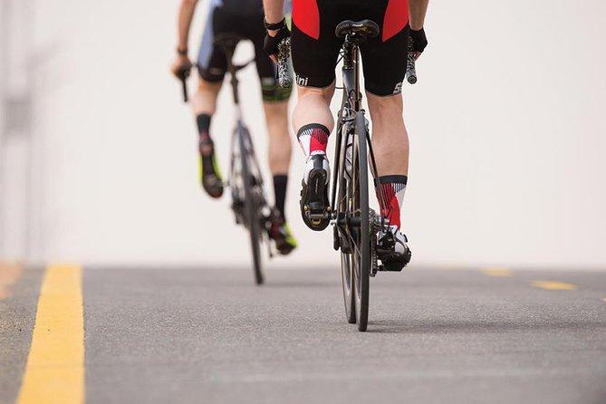 Al Wathba Cycle Track Bike Rental