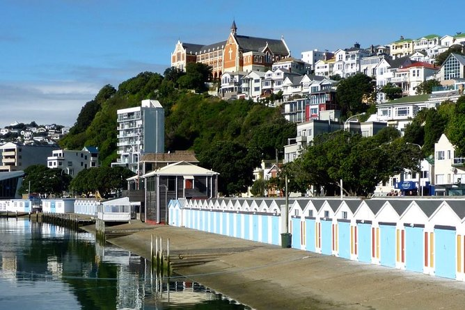 Colours of Wellington - Private City Highlights Tour (Full Day)