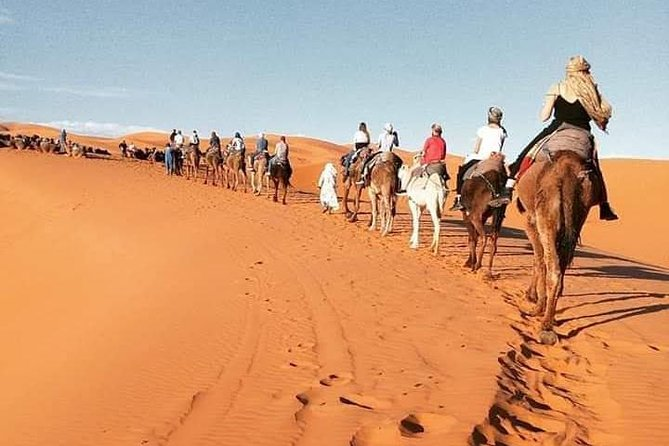 3 Days Luxury private Desert Tour From Fez to Marrakech photo 9