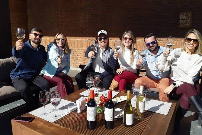 Casablanca Wine Tour (2 wineries) + Valparaiso (small group tour)