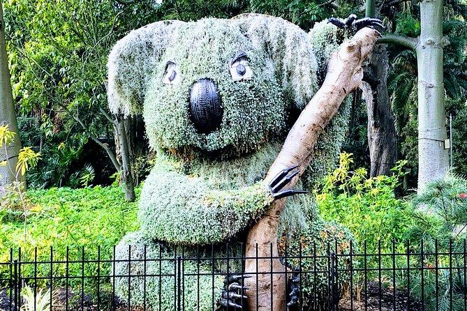 Discover Sydney - Botanic