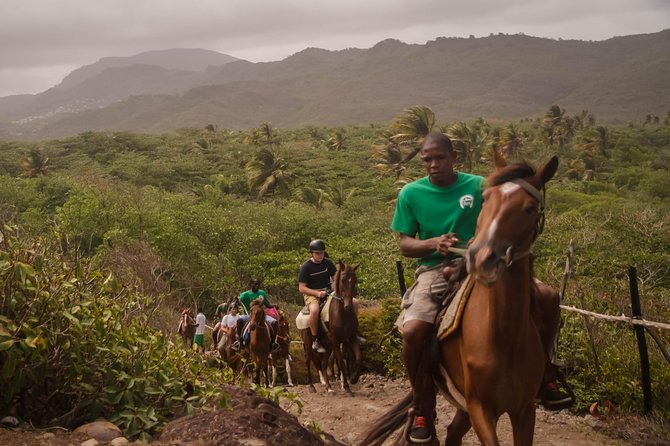 East Coast Riding Stable: Horseback Riding Excursion St. Lucia photo 19