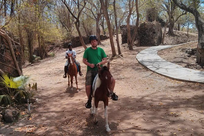 East Coast Riding Stable: Horseback Riding Excursion St. Lucia photo 11
