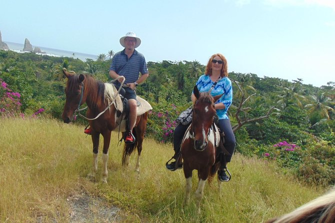 East Coast Riding Stable: Horseback Riding Excursion St. Lucia photo 31