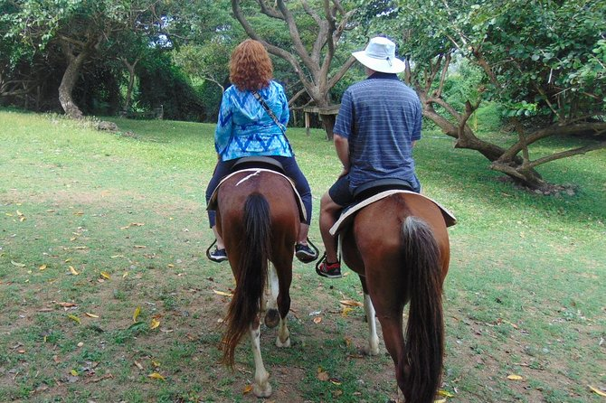 East Coast Riding Stable: Horseback Riding Excursion St. Lucia photo 21