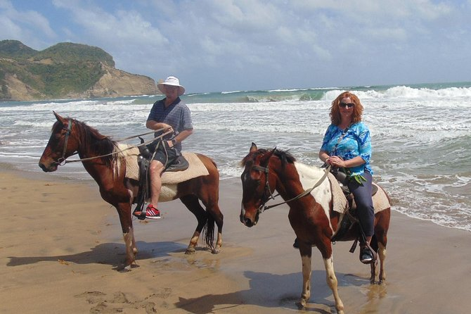 East Coast Riding Stable: Horseback Riding Excursion St. Lucia photo 20