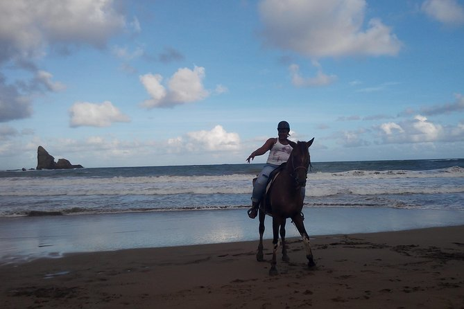 East Coast Riding Stable: Horseback Riding Excursion St. Lucia photo 13
