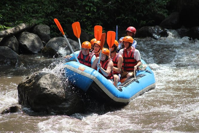 Ayung River Rafting Admission & Private Transfer