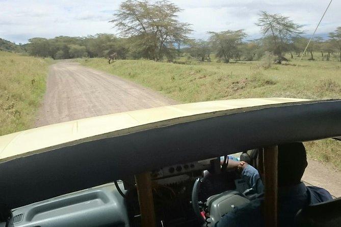 Tour Nairobi National Park