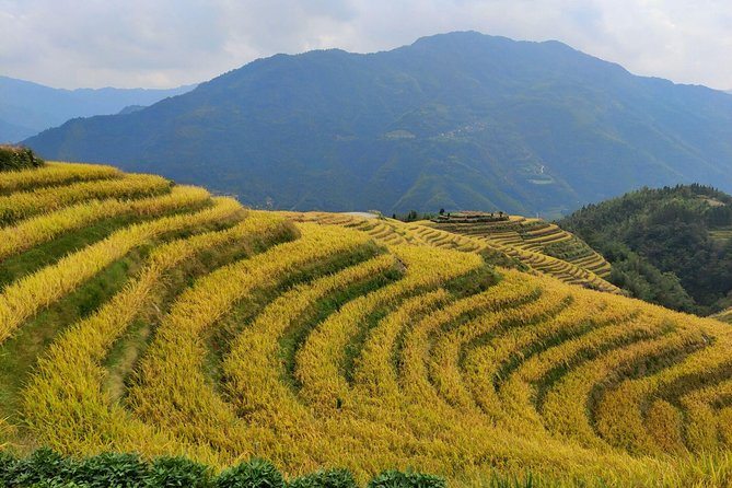 Longji Rice Terraces Day Tour from Guilin hotel