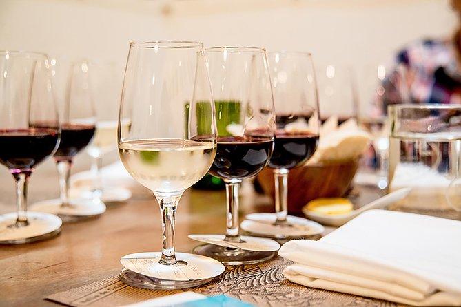 Wine tasting tour through Santiago