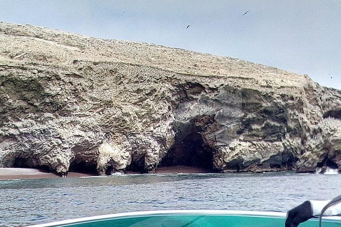 Ballestas Islands and the Paracas National Reserve from PISCO