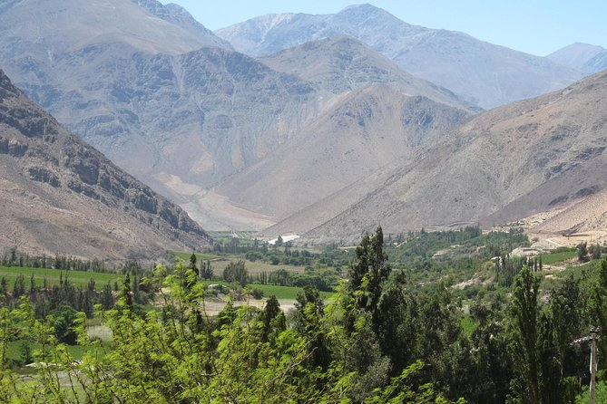 Elqui Valley Shore Excursion. Lunch and Tickets - Shared Service