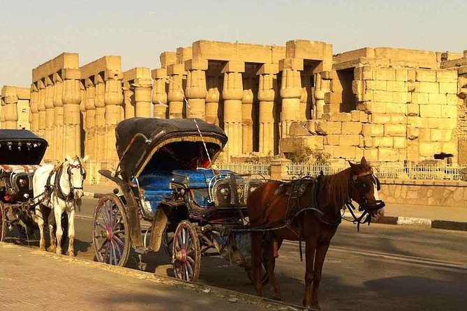 Private Luxor City tour by Horse Carriage