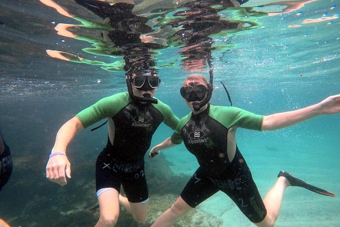 5-Day Diving in the Galapagos Islands