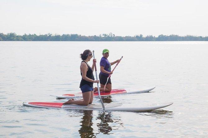 Kayaks, Paddle Boards and Bird Watching