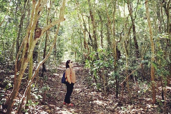 Suranadi Forest Trekking and Holy Bathing