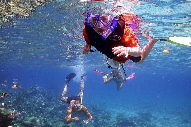 Bali Blue Lagoon Snorkeling Included Lunch and Transport