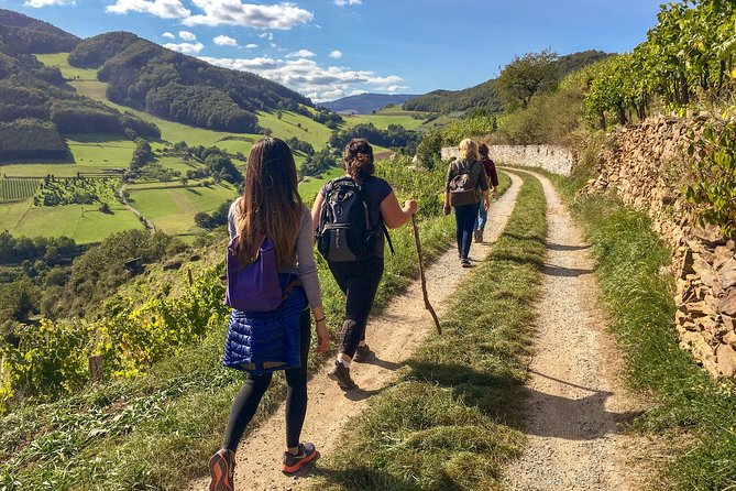 Wachau World Heritage Hike