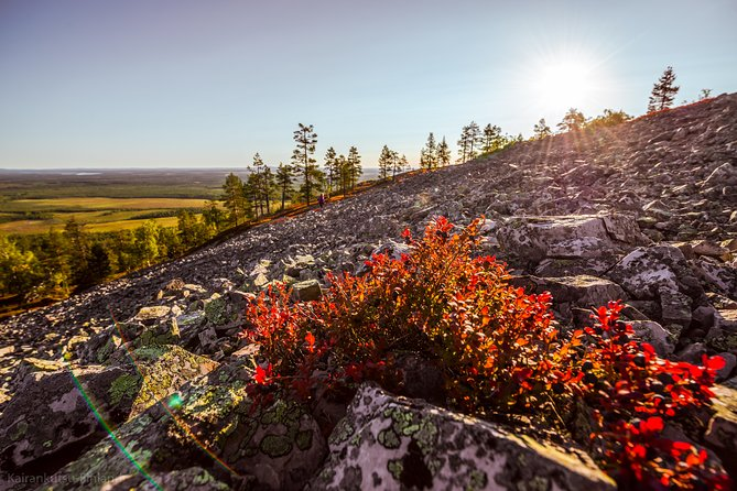 Guided easy hike in Finland deepest gorge in Pyhä-Luosto National Park