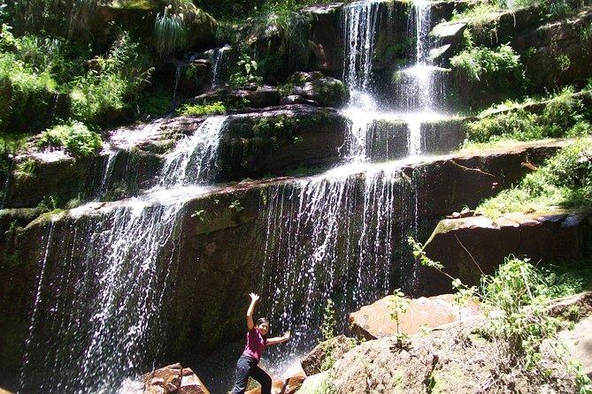 From Quebrada de Humahuaca to Yungas Jungle by the Qhapac Ñan
