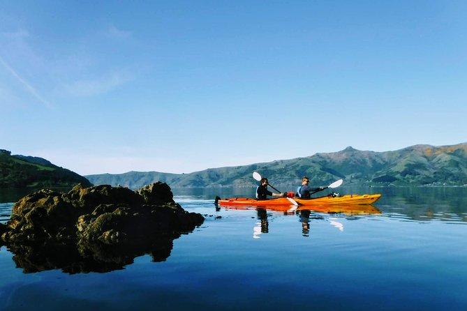 Guided Electric Mountain Bike & Sea Kayak Tour in Akaroa